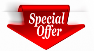 WordPress Website Development Special Offer!